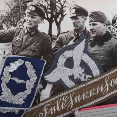 picture of The Brian L Davis Collection of Third Reich Insignia - Online & Postal Auction